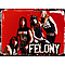 Felony - Say Goodbye текст песни